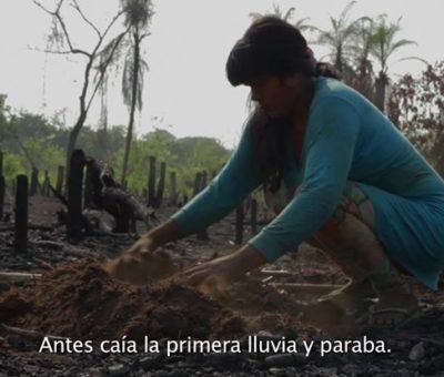 Lanzamiento del Premio Anaconda y estreno del largometraje Regresando a la tierra