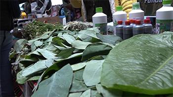 Feria de medicina tradicional indígena– Corto Documental 5